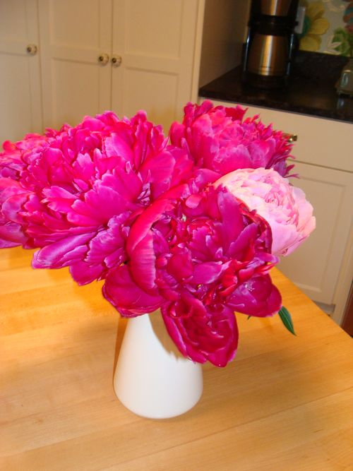 Pink peonies 2011 picture 2